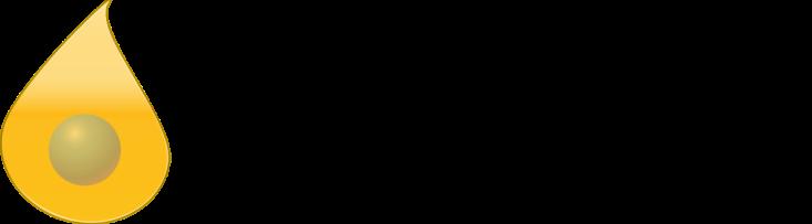 Logo Ai(2)